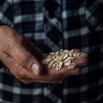 A Story of Organic Farm from @HelsinkiSmart: https://t.co/ws8WKY9WXH @Luomutila       @WWF #togetherpossible @LukeFinlandInt #smartregions