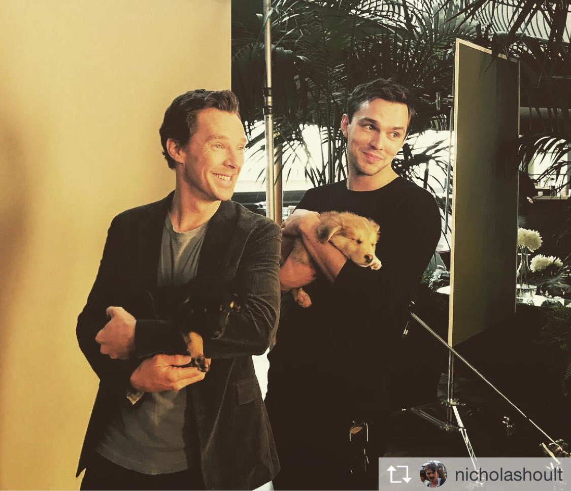 #Repost @nicholashoult : Cumberbatch and puppies. Life complete. #FlyCelebs<br>http://pic.twitter.com/tU5sIN6W06