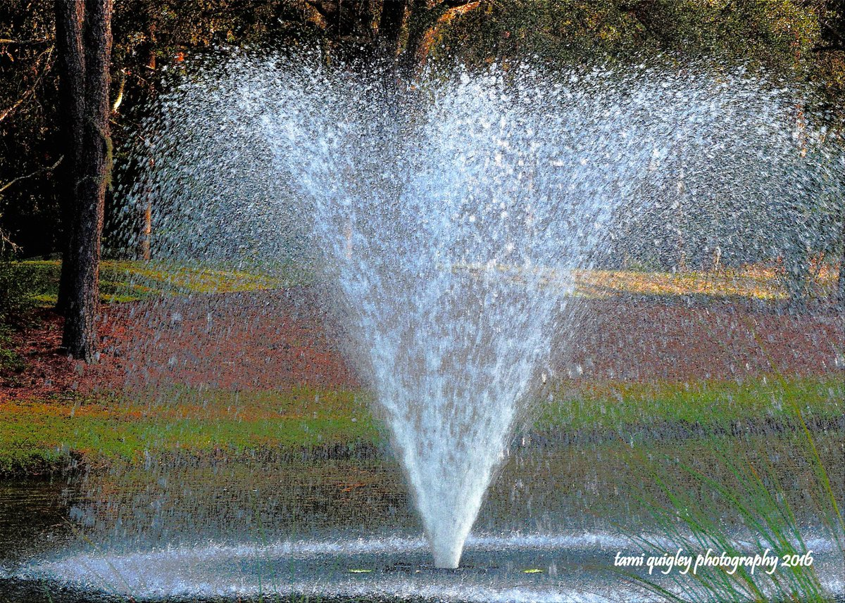 A Splash Of Dixie  https:// tami-quigley.pixels.com/featured/a-spl ash-of-dixie-tami-quigley.html &nbsp; …  #FridayFeeling #art #prints #gifts #decor #egallop #Lowcountry #SC #Dixie #fountain #LehighValley<br>http://pic.twitter.com/6iF6MiO3Gm