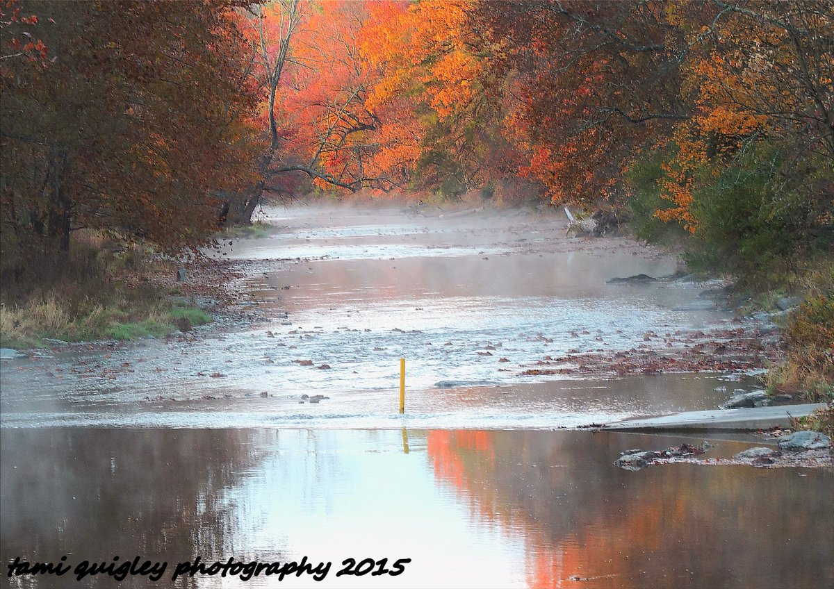 In The Early Morning Mist  https:// tami-quigley.pixels.com/featured/in-th e-early-morning-mist-tami-quigley.html &nbsp; …  #FridayFeeling #FirstDayofFall @lehighvalleypa @wildlandspa #LehighValley #art #prints <br>http://pic.twitter.com/YqLoPmyhkm