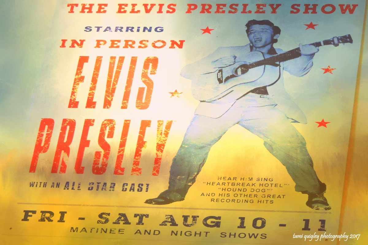 This Is #Elvis Country  https:// tami-quigley.pixels.com/featured/this- is-elvis-country-tami-quigley.html &nbsp; …  #FridayFeeling #ElvisPresley #LehighValley #Slatington #galleries #art #prints #decor #gifts<br>http://pic.twitter.com/9n4YXkeHD9