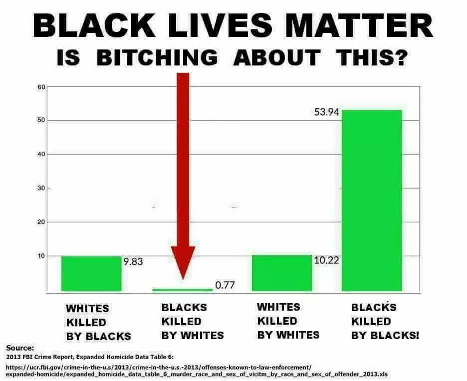 #BlackLivesMatter  ignores the extraordinary and devastating number of blacks killed by other blacks Why aren&#39;t we talking about that? <br>http://pic.twitter.com/CqZpTJGJz7