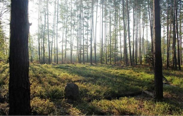 A #Polish #Stonehenge? Discovery of New Burial Mounds May Rewrite #History -  https:// buff.ly/2xSOa44  &nbsp;   #archaeology #discovery<br>http://pic.twitter.com/ULshPJM0Bp