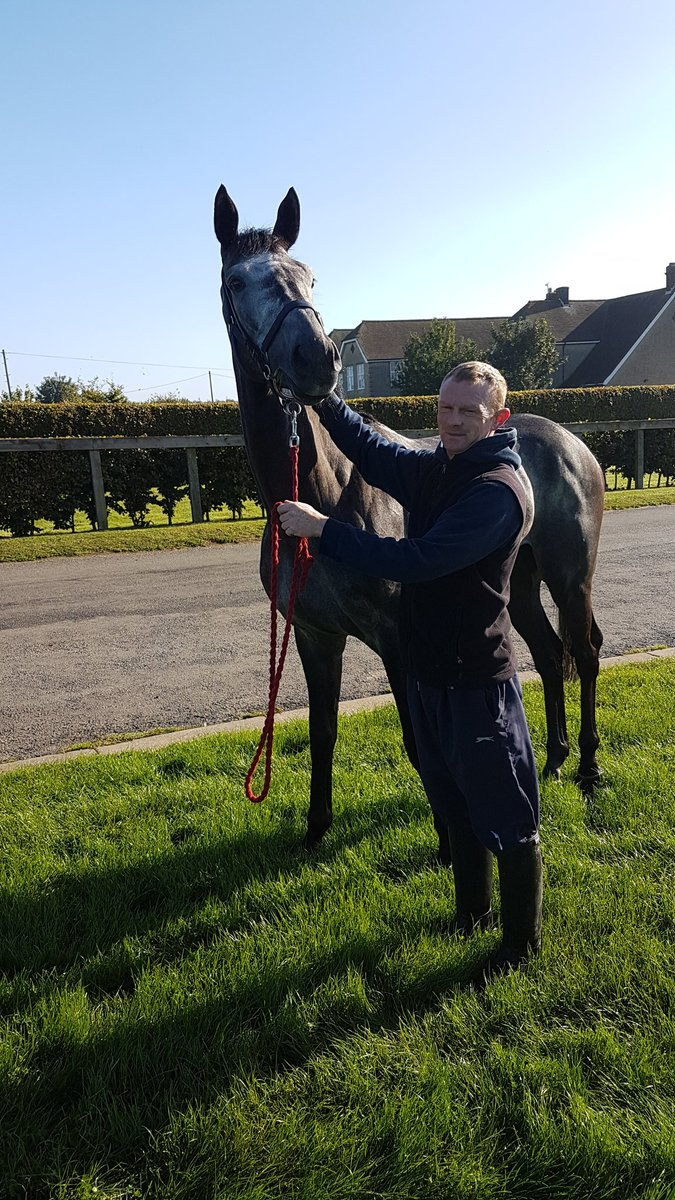 #Newmarket. The Graduate and #Mikey o Conor enjoying the #Sunshine of # Newmarket Racecourse .Early morning work complete . <br>http://pic.twitter.com/23VP9h017S