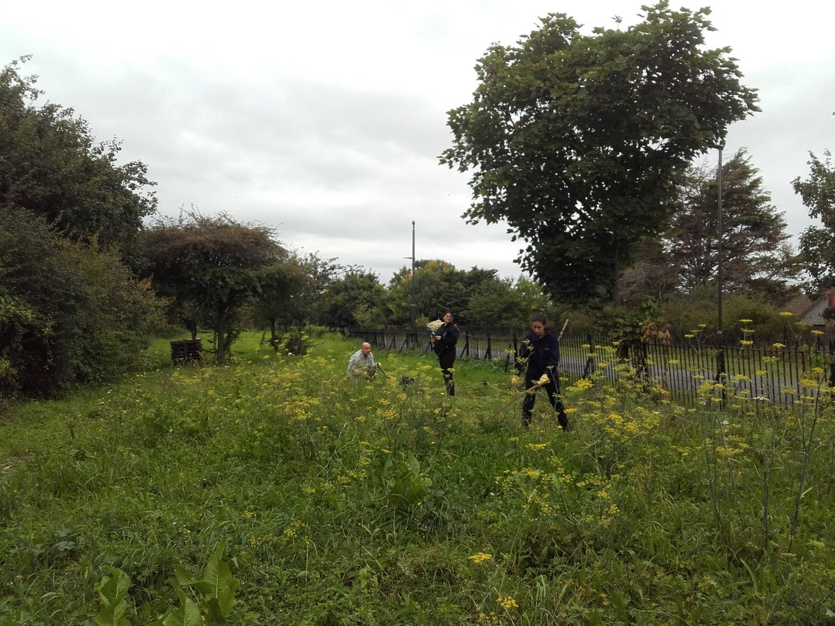 Before &amp; after scything our #wildflower meadow at the Greenway #Orchard. Fantastic work by #volunteers @TCVtweets @NewhamLondon @thameswater<br>http://pic.twitter.com/Hf8WoPkSlJ