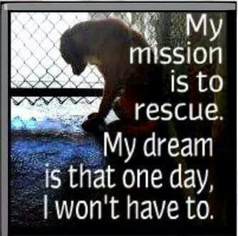 Beautiful quote from Tia Torres, from Villalobos Rescue Center and Pit Bulls and Parolees. #dogs #rescuedog #AdoptDontShop<br>http://pic.twitter.com/zkd4zqZUww