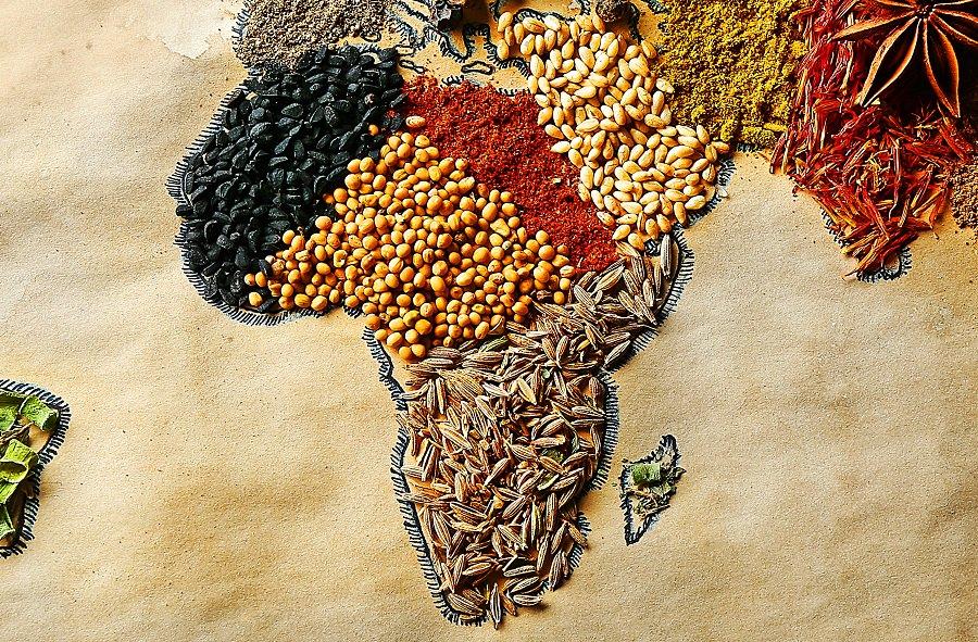 L'alimentation et la #restauration en #Afrique sont sources d'#emplois pour les jeunes 🍌🍍🍅 https://t.co/Njw3QOF9Sq
