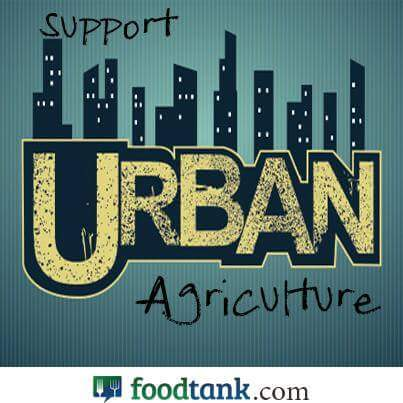 Support urban agriculture! It increases food access, builds healthy communities and brings the love of nature to the streets! #FoodTank <br>http://pic.twitter.com/L2f8tVLDep