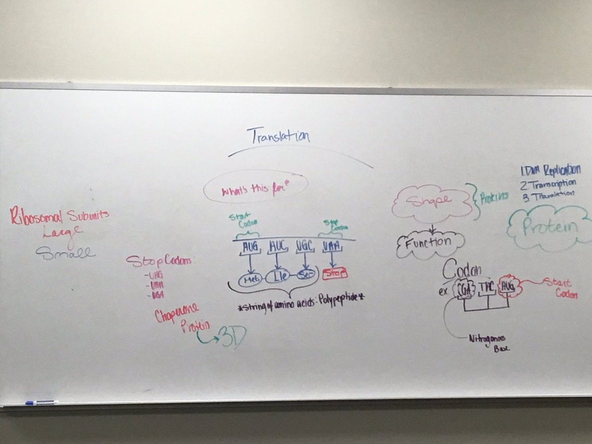 Is this a college professor&#39;s work - nope ! One of our @STEMAcademy2  students is teaching her peers about Translation #Biomedical <br>http://pic.twitter.com/ok58h6wFzM