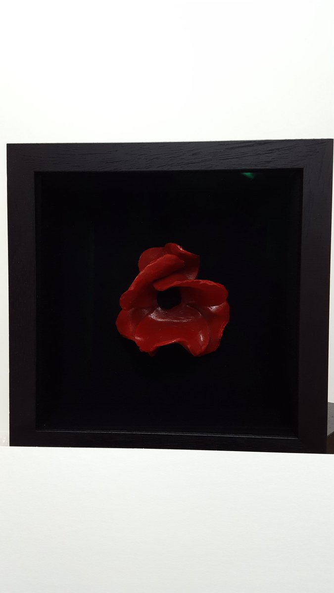 Another success. #london #poppy #toweroflondon #framing <br>http://pic.twitter.com/Y10zPf78sM