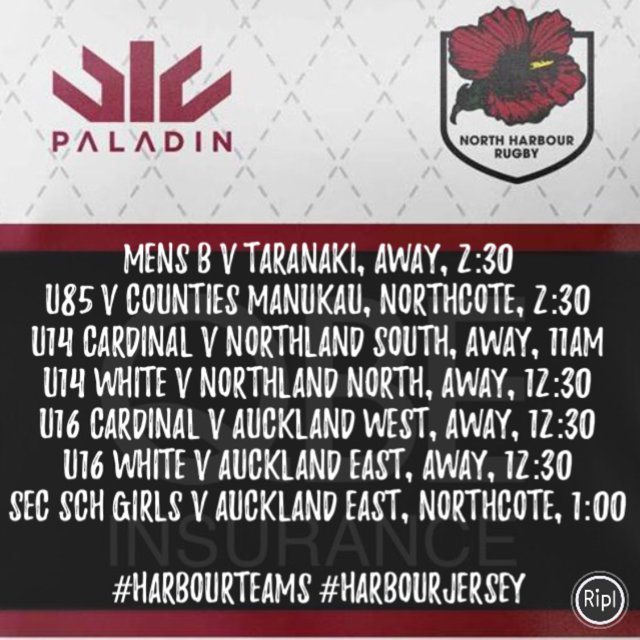 HarbourRugby