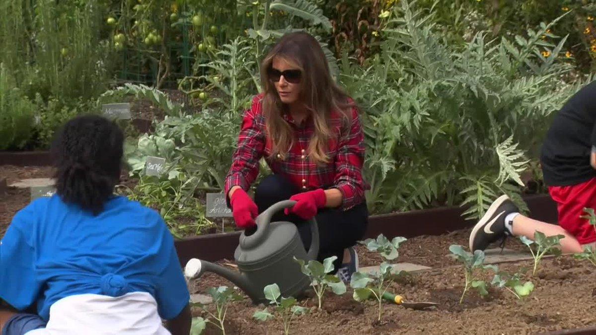 VIDÉO - Melania Trump jardine à la Maison blanche (comme Michelle Obama avant elle) https://t.co/GRCEqtgpiV