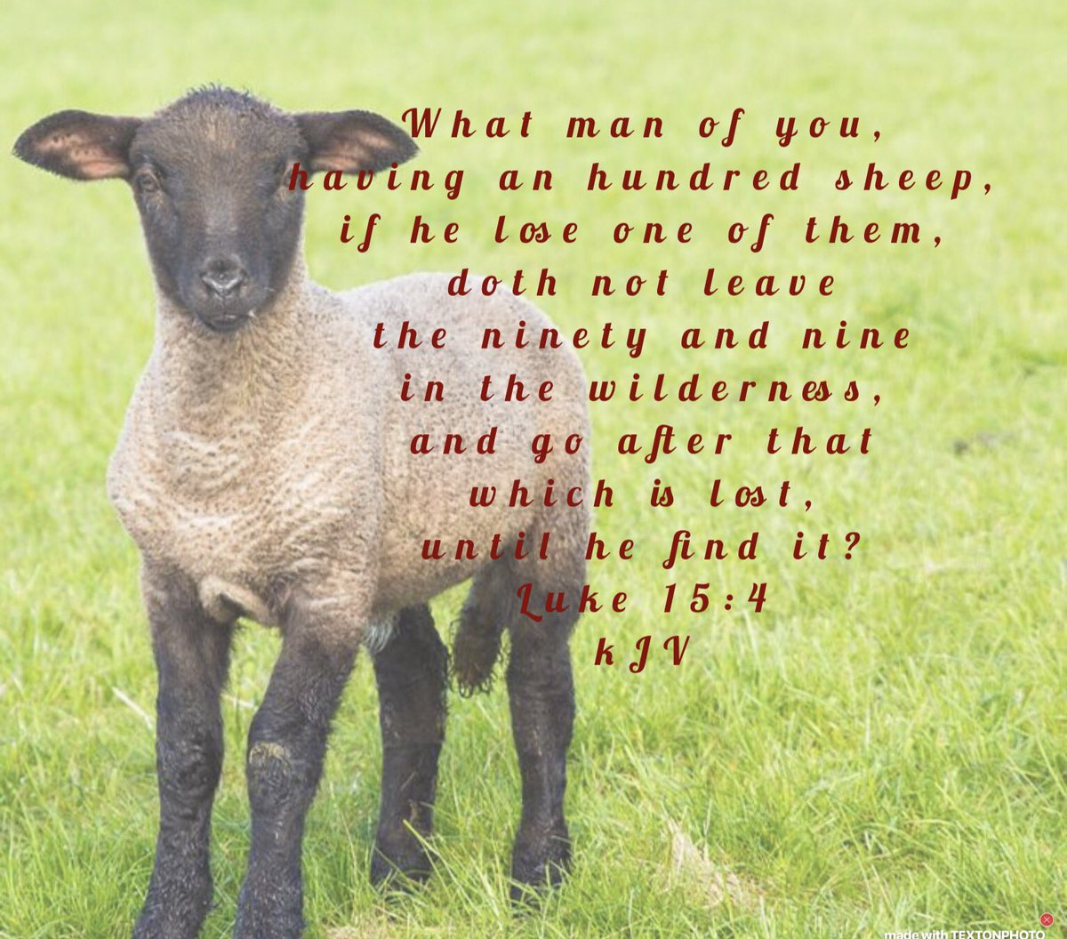 And when he hath found it, he layeth it on his shoulders, rejoicing Luke 15:5 KJV #JesusChrist Good Shepherd #looking for His #lost #sheep <br>http://pic.twitter.com/cJCfZ7rTeG