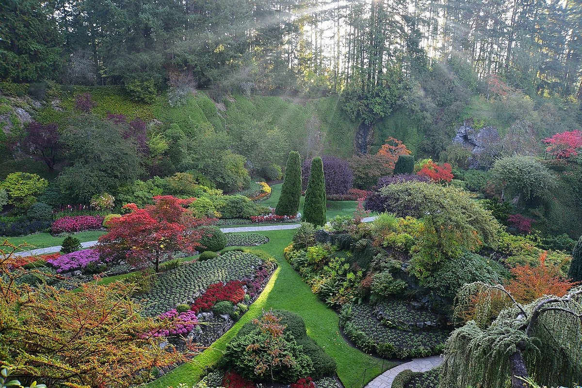 Happy #FirstDayofFall! #Victoria is in for a colourful month ahead as leaves start to showcase their #autumn colours. #yyj #gardening <br>http://pic.twitter.com/5KkclQPz7F