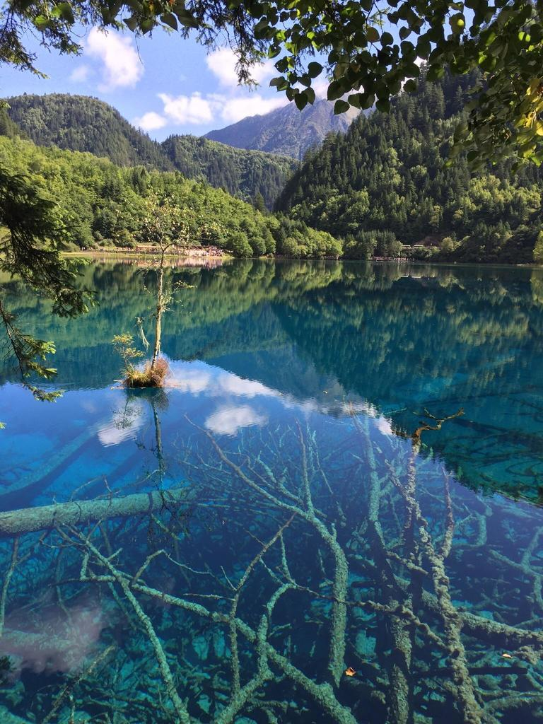 #One of the lakes of Jiuzhaigou - China before the devastating earthquake last August [OC] [2317x3089] #travel #earth roadlesstravelled… <br>http://pic.twitter.com/vIfz9N1b0D