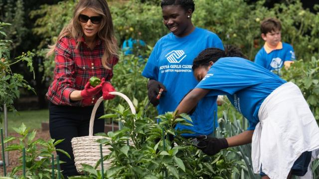 Melania Trump holds first event in White House garden Michelle Obama established https://t.co/Dg4L1xGQIV