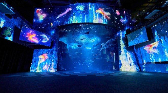 新江ノ島水族館「ナイトワンダーアクアリウム」新展示がスタート - 星空×深海の煌めくファンタジー - https://t.co/1mPYBBrc7M