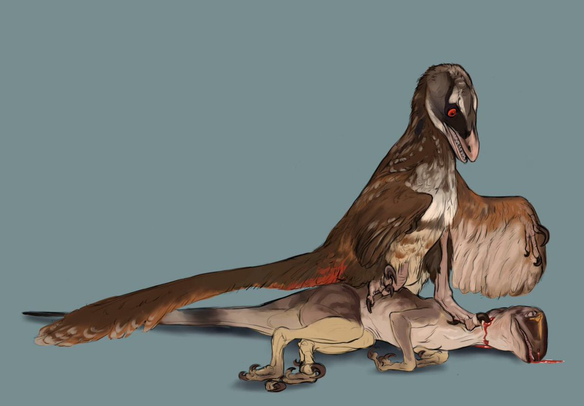 Out with the old Deinonychus. In with the new Deinonychus. By @Vantidart. #FossilFriday https://t.co/ml1u89y1QD