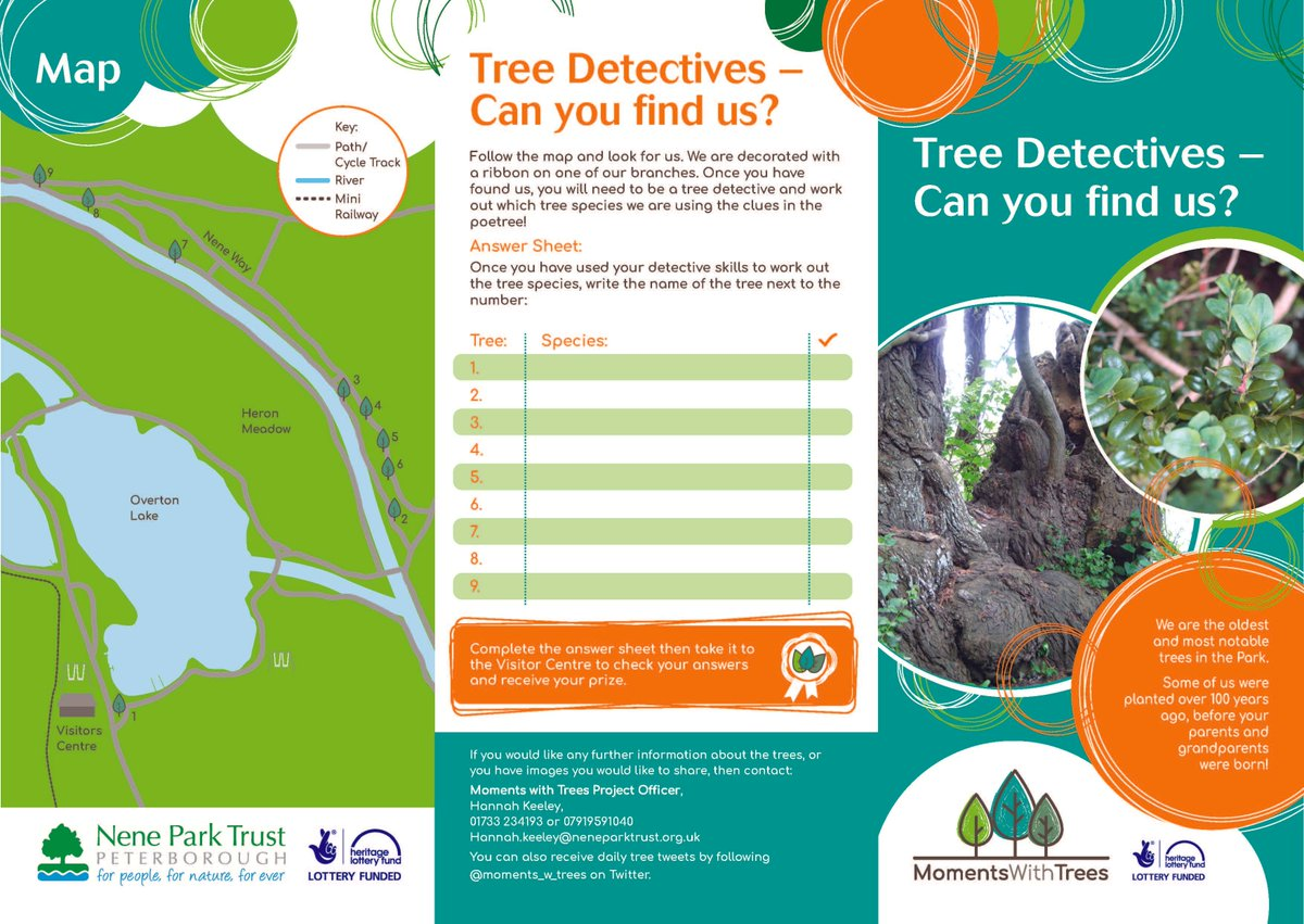 #Weather is looking good for #weekend in #Peterborough. Be a #Tree Detective in #Bluebell #Wood follow trail @neneparktrust see Info Centre<br>http://pic.twitter.com/YdwjL1NRCT