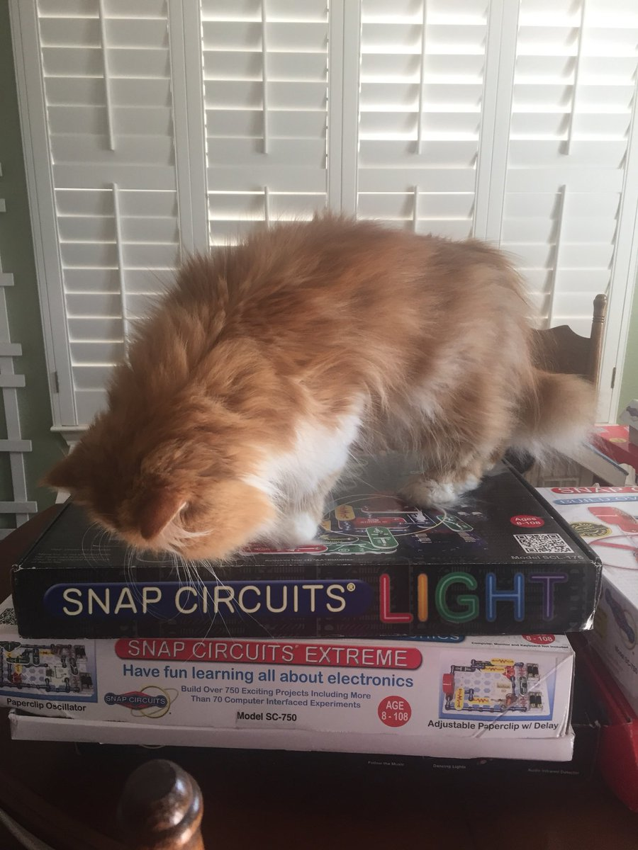 Las Lomas Library On Twitter Looks Like I Am Going To Have Help Snap Circuit 750 Organizing The Kits For Our Exploratory Learning Stations Next Week