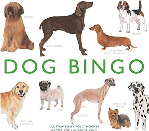 (#Dog #Bingo (#Magma for #Laurence #KING)) on  https:// shop-news.net/dog-bingo-magm a-for-laurence-king/ &nbsp; …  #Birds #Cats #Dogs #FishAquaticPets #Horses #Insects<br>http://pic.twitter.com/2qVcPq8dGN