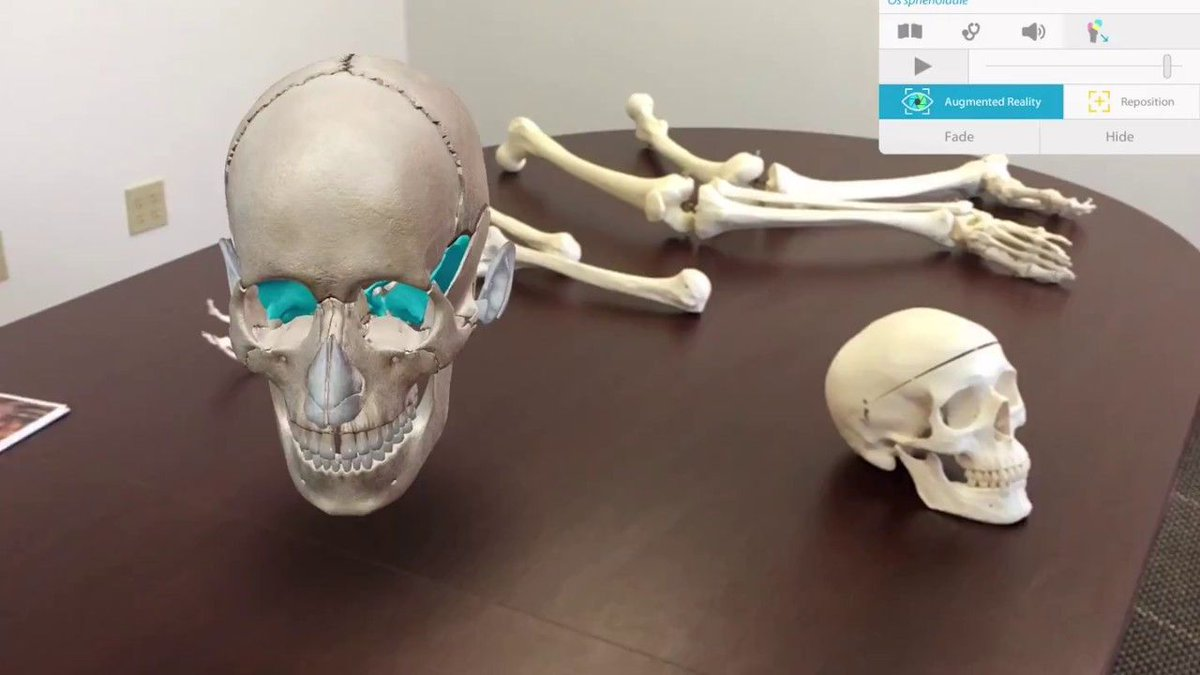 #AugmentedReality in Human Anatomy Atlas 2018 for iPad/iPhone | Visible Body  https:// buff.ly/2xyvrK7  &nbsp;   #AR<br>http://pic.twitter.com/97N2n5b6NG