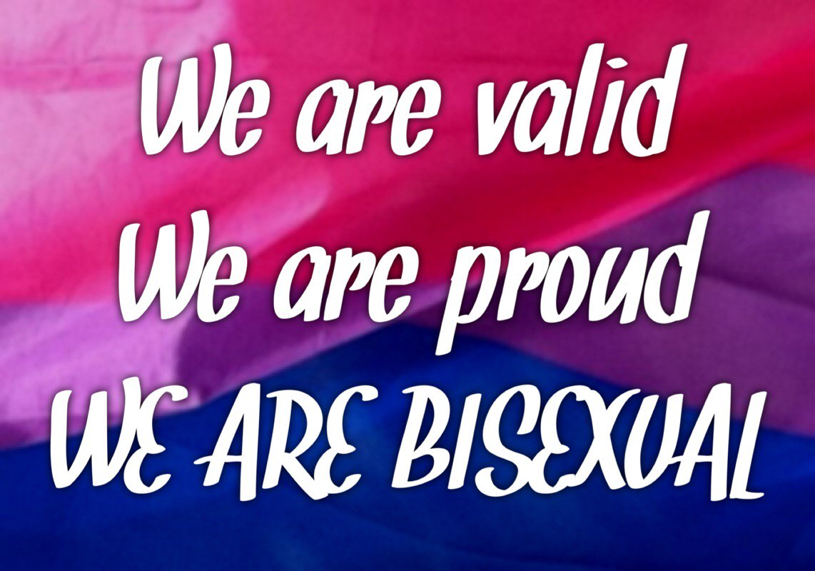 Image result for We are Proud. We are Valid We are bisexual