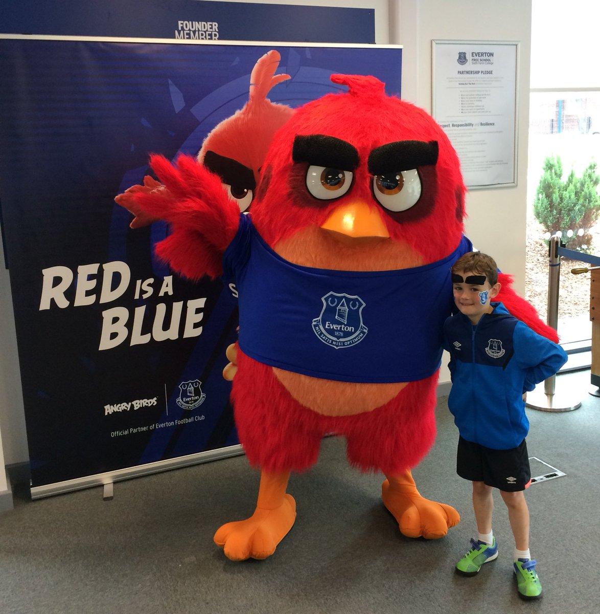 Eoin B@ceathrumor         @AngryBirds @Everton #RedIsABlue #EFCmatchday