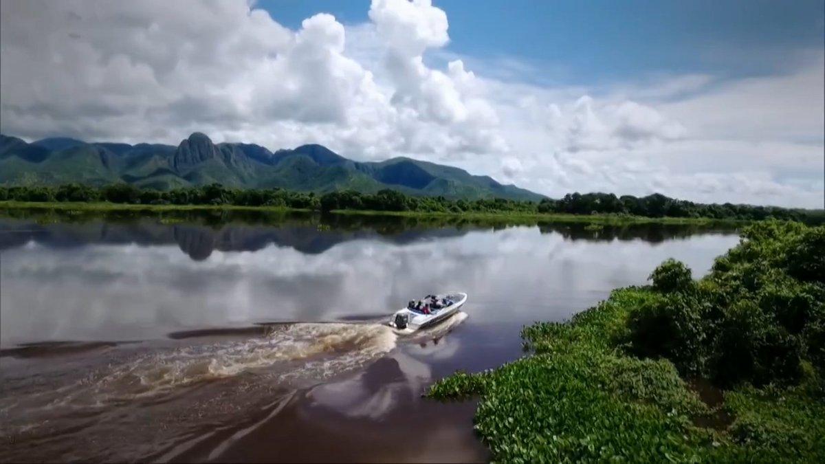 Você conhece o Pantanal? Faça o teste! https://t.co/awiIhdDkXQ