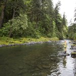 Here's a great pic of #Oregon's Molalla River Recreation Area for National Hunting and Fishing Day #HuntShootFish