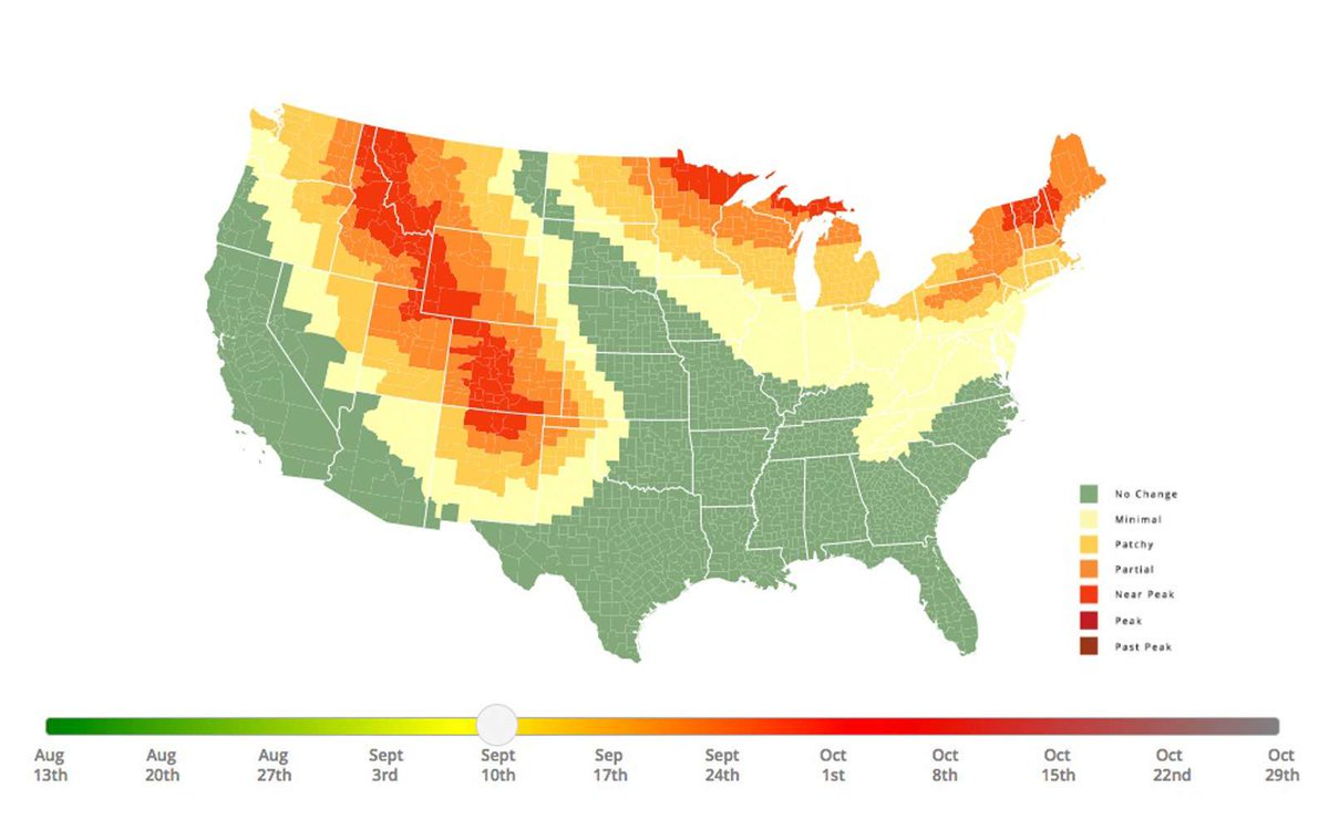 #AUTUMN - 2017 Interactive Fall Foliage Map. Ultimate Guide to Progressive Changing of Leaves!  #AUTUMNLEAVES #Fall  http:// bit.ly/2ajKLOB  &nbsp;  <br>http://pic.twitter.com/mdXFAgQutB