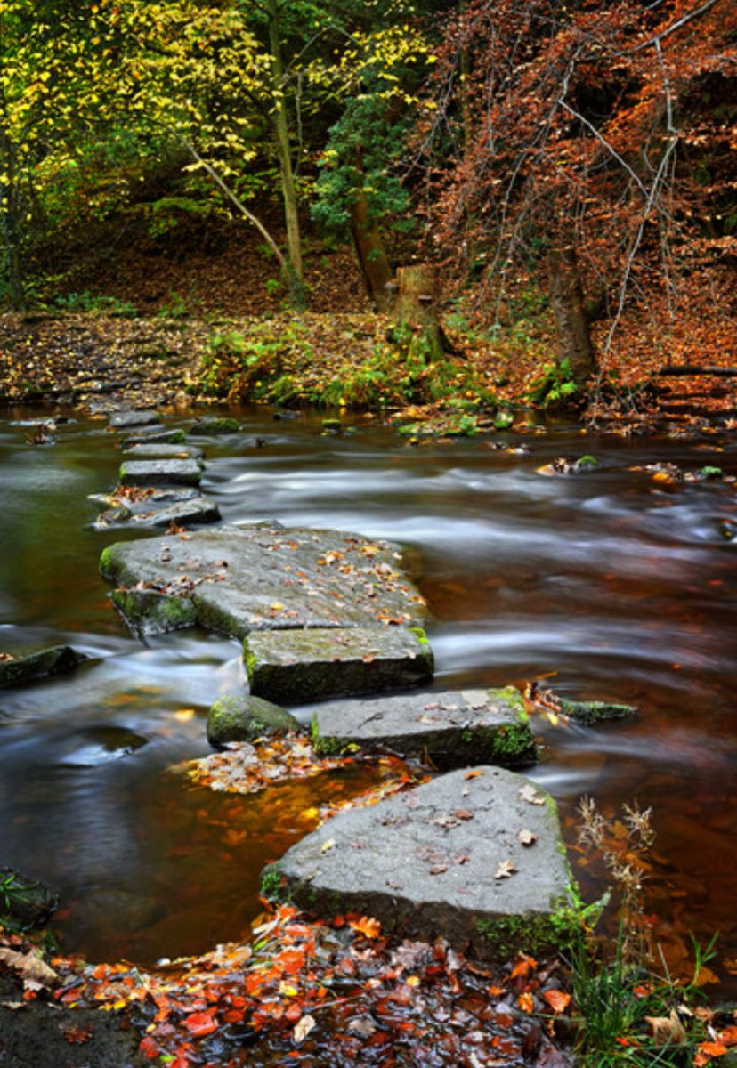 New Artwork for sale at  http:// shop.photo4me.com/688012/canvas  &nbsp;   #Rivelin,#Sheffield, #SouthYorkshire,#DarrenGalpin  #sheffieldissuper Image ©  Darren Galpin<br>http://pic.twitter.com/E4OVk7w7S9