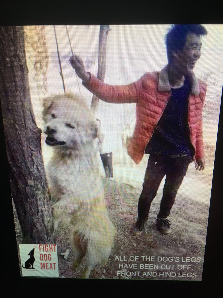 @RepDerekKilmer  THE  #TORTURE  PLS #COSPONSOR  #HRES401 YOU CAN #END THIS #ASIA NEEDS #ANIMAL LAWS THEY ARE NOT #FOOD<br>http://pic.twitter.com/wynyMZ0xyS