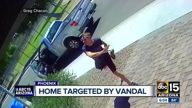 Rock hurling teen tries to keep fingerprints off evidence https://t.co/0Bi69BmEiy #abc15