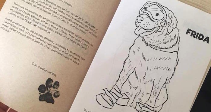 Diseñadora crea libro para colorear para llevar alegría a los niños ...