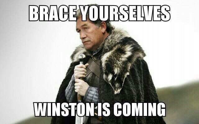 Not my work but still... #nzpol    can&#39;t find original creator to credit. <br>http://pic.twitter.com/ZmgpJYpDJJ