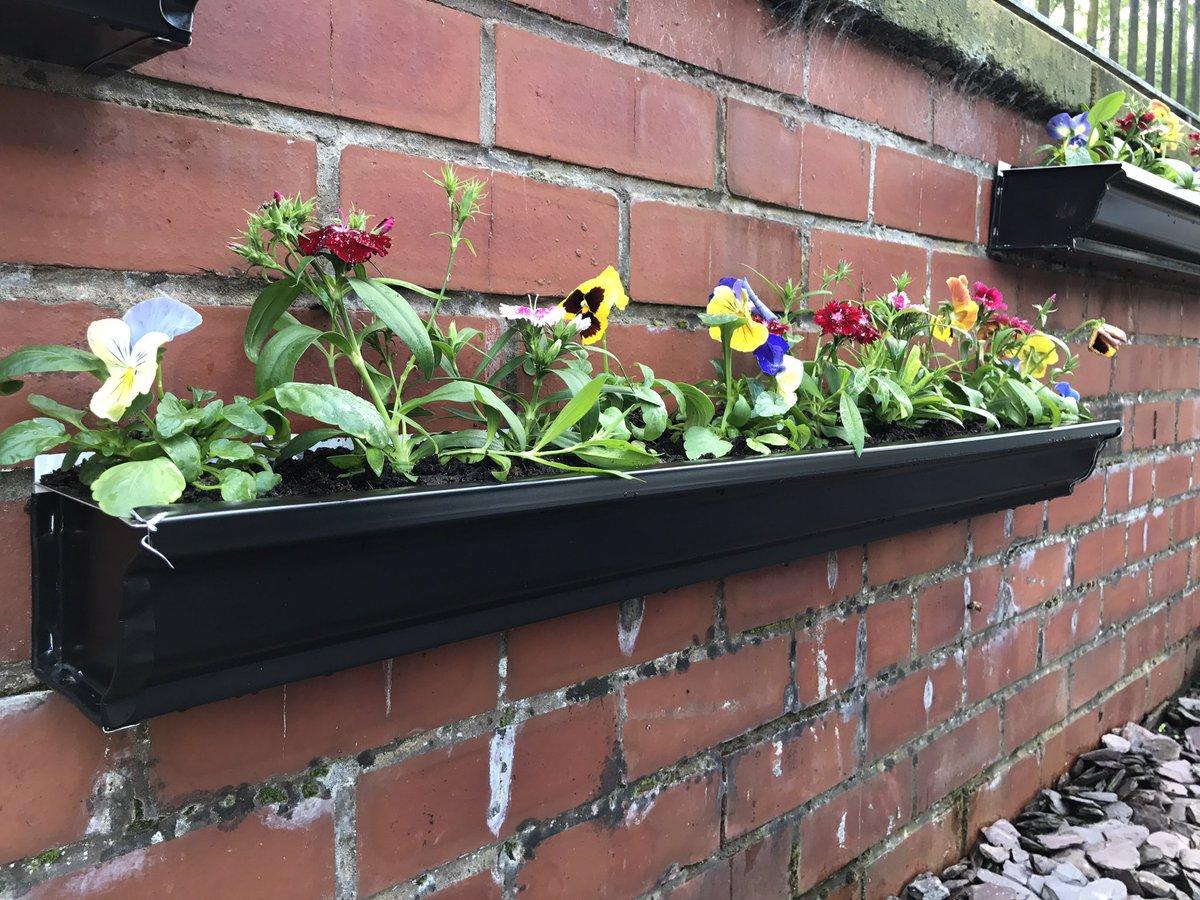 Looks like seamless aluminium guttering makes good planters #SundayFunday #goodidea #planters #guttering #gardening #weekend<br>http://pic.twitter.com/JyvBgtTCkw