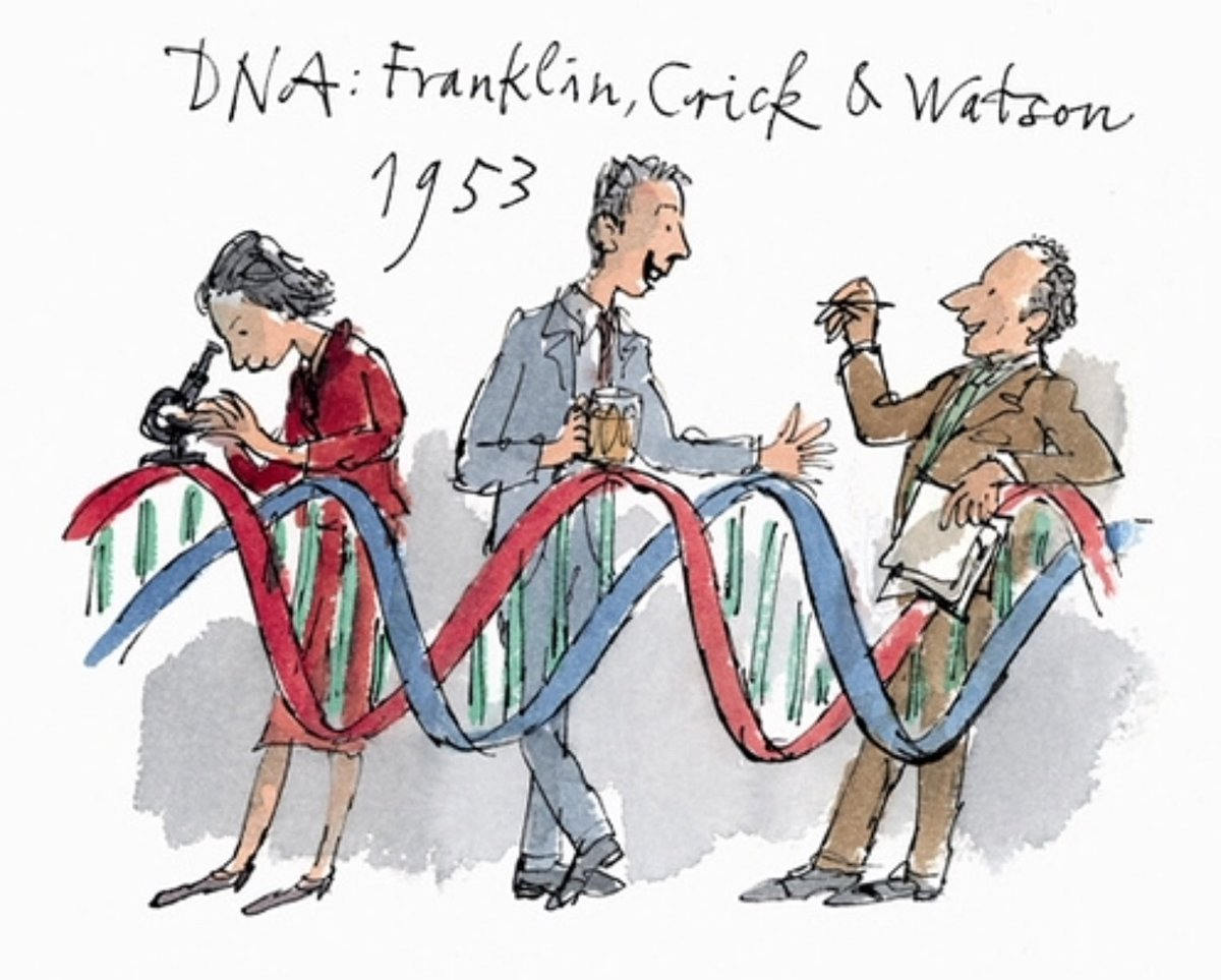 Nothing captures better the problem and the perception of #academic #gender bias than this @QuentinBlakeHQ picture<br>http://pic.twitter.com/UvgbUurkQf