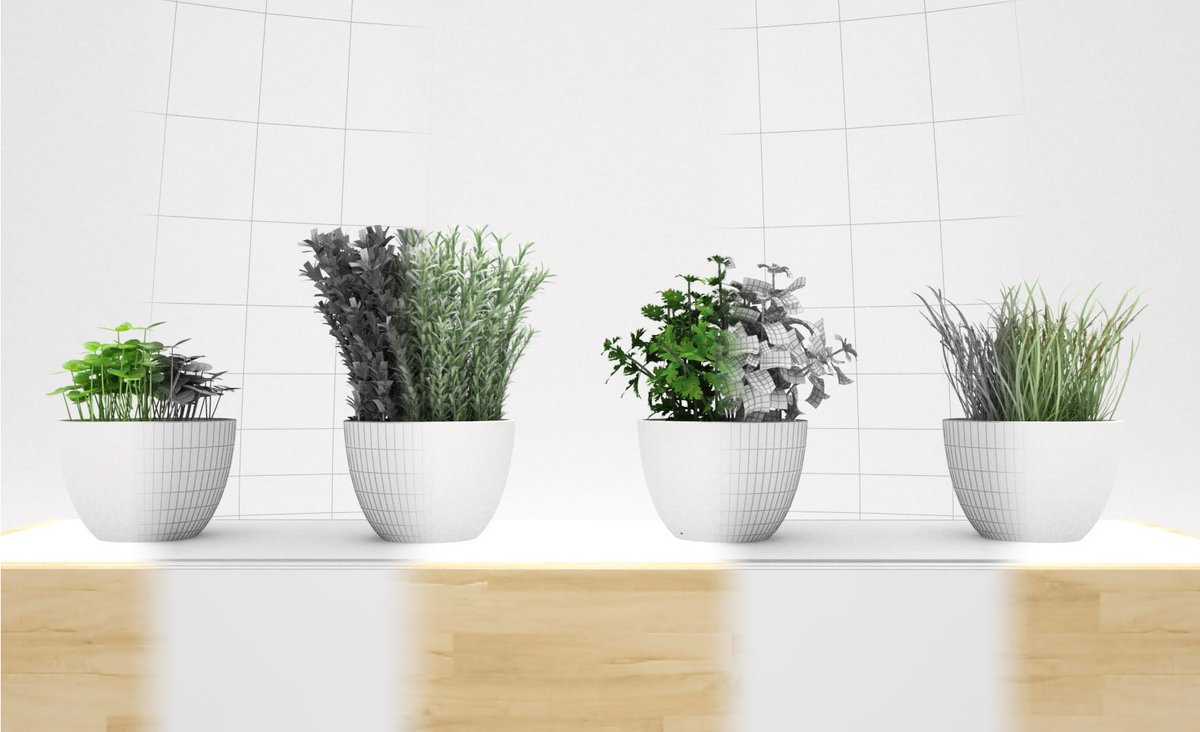 Great #Kitchen #plants for your #renders #3D #resources for your #design #archviz #gamedev #Architecture #decoration  https:// 3docean.net/item/kitchen-p lants-3d/17730767 &nbsp; … <br>http://pic.twitter.com/dq9qsgBBdL