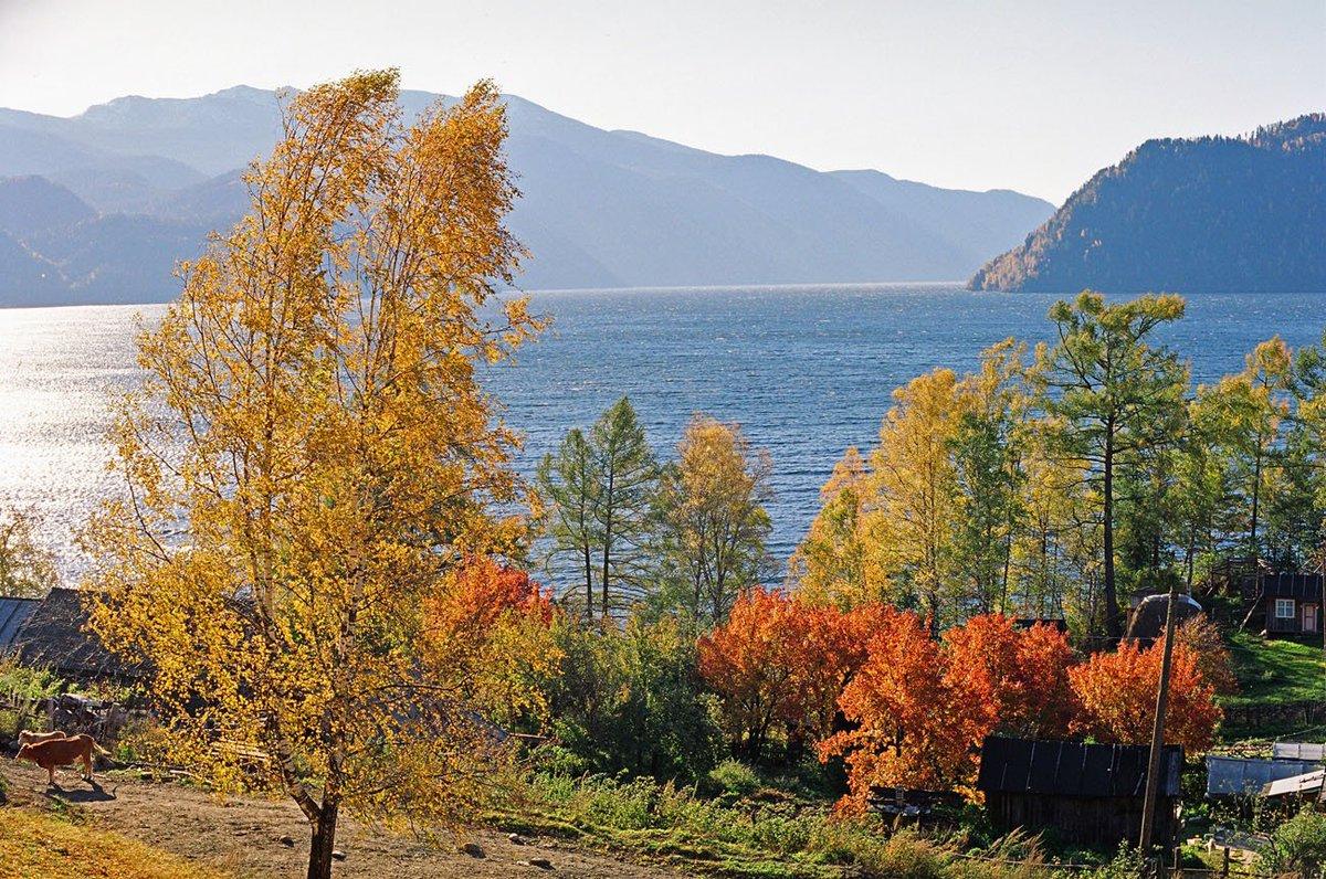 алтайский заповедник фото осень