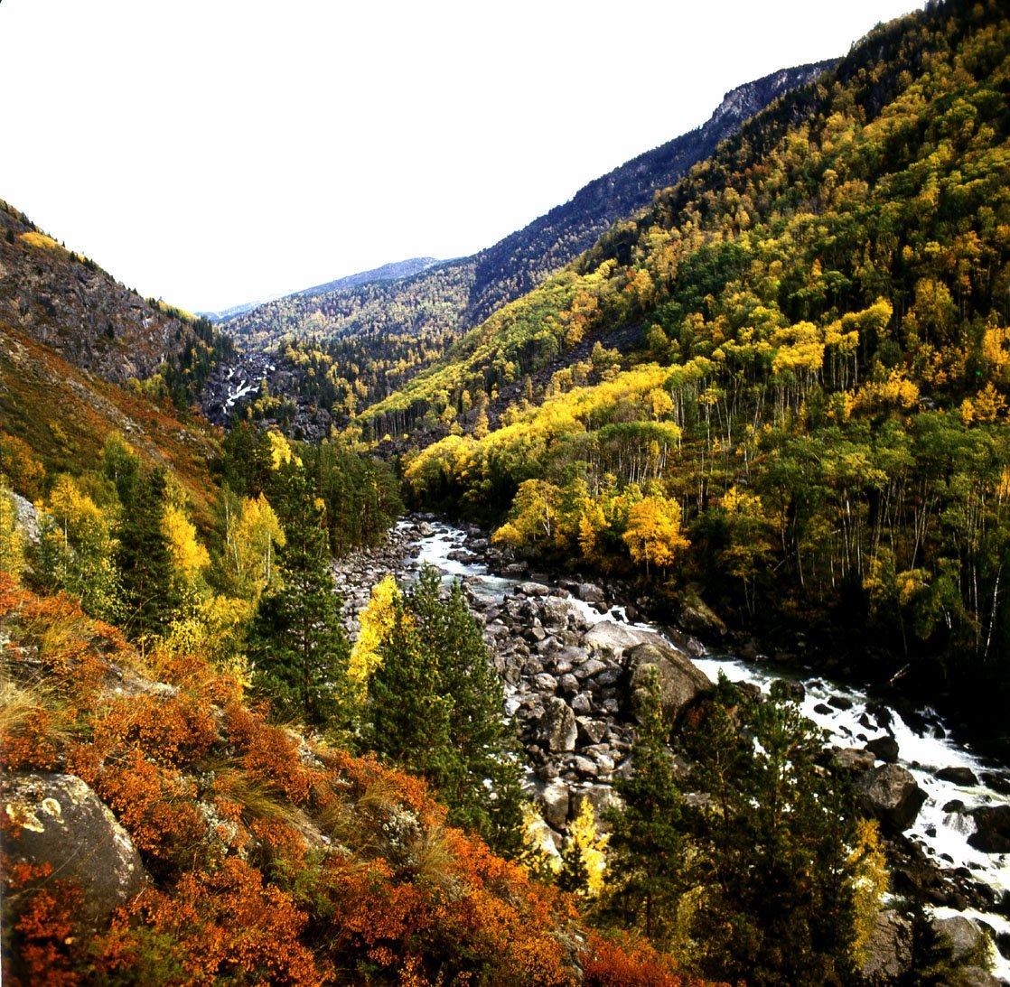 педикюр алтайский заповедник фото осень как раз будем