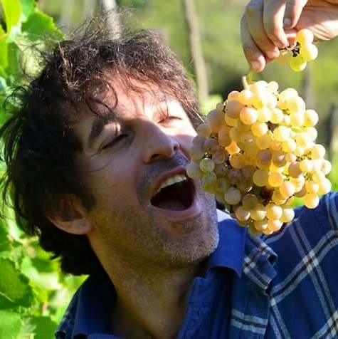 test Twitter Media - Latest members offer - €480 off #boutique #biodynamic #wine holiday in #Italy. Pick any date to October 2018! https://t.co/ISVUwDGT0e https://t.co/lEiiw2xgjd