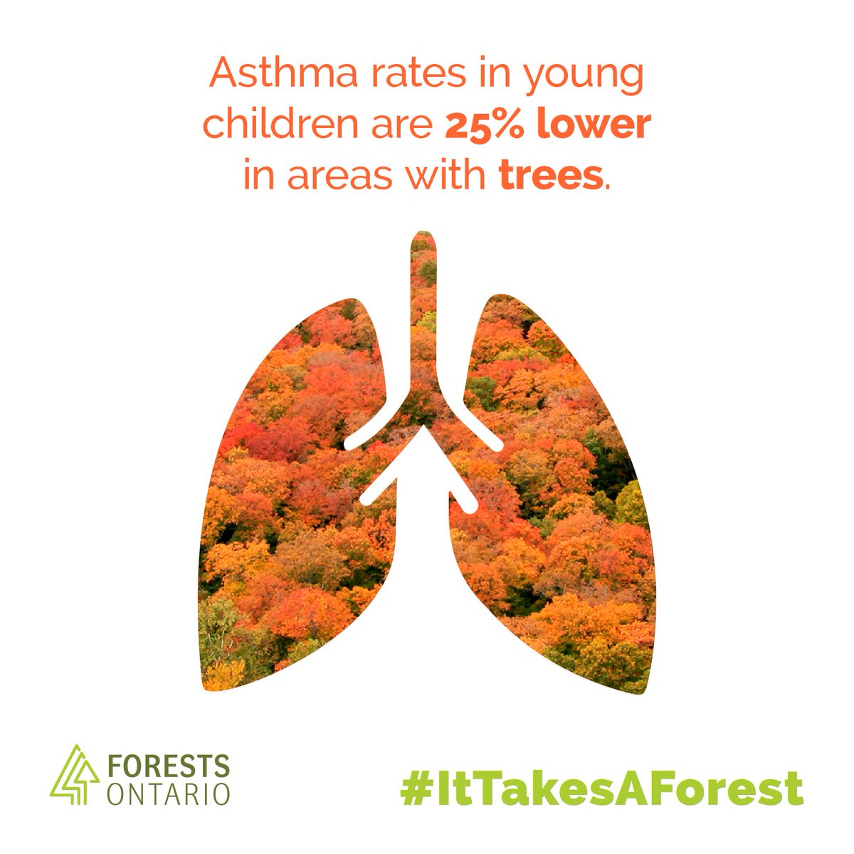 Happy #NationalForestWeek! We're kicking the week off with today's the...