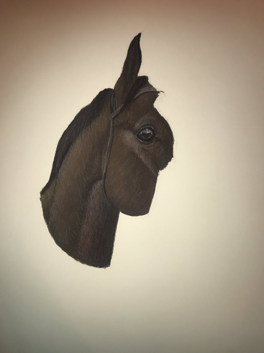 Evening everyone. Hope you&#39;ve had a fantastic weekend. I have another update on the urgent horse commission #equinehour #eyes  <br>http://pic.twitter.com/HhGIUzYi3p