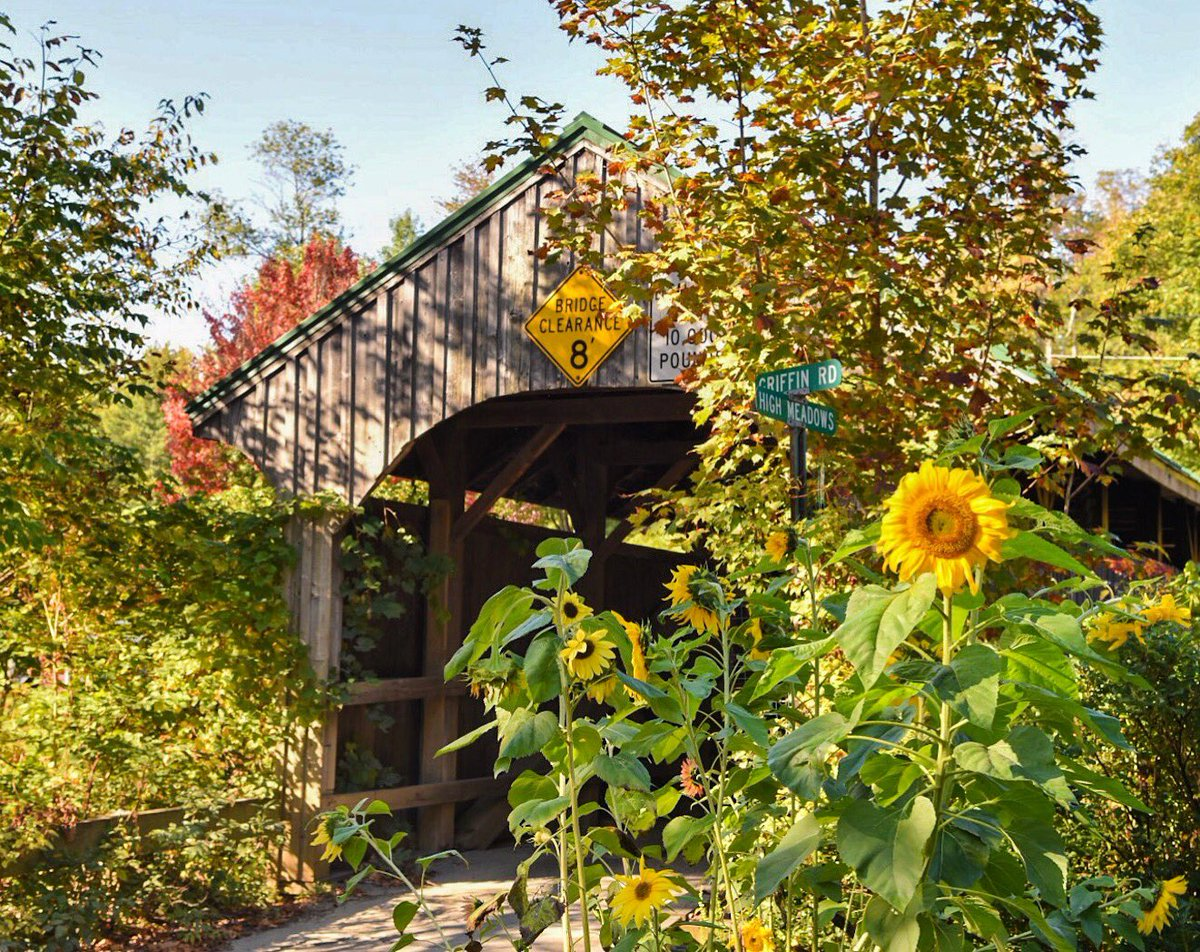 Sunflowers take over covered bridge.  Summer refuses to let go.  @THISISVT   #sunflowers @VermontTourism @VermontLife @artofvermont<br>http://pic.twitter.com/ouGIGn4jTL