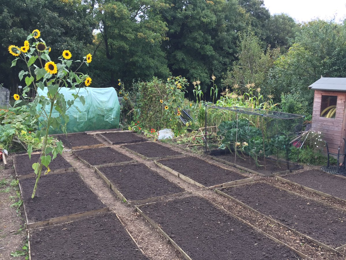 Almost got my existing #allotment ready for Spring. Green manure sowed and dried &amp; crushed seaweed added to beds. <br>http://pic.twitter.com/HoDszAnsS4