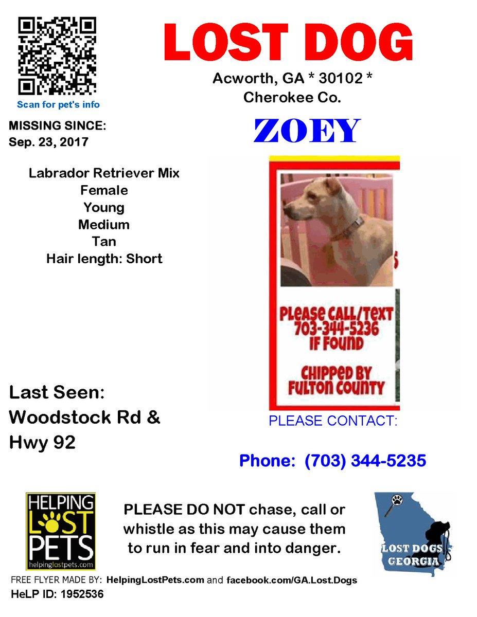 Please help me find my dog! Please retweet!  #dog #dogsoftwitter #lostdog #helpme #Reward #Acworth #GA #pets #RetweeetPlease #Retwittear<br>http://pic.twitter.com/UyxM4l9uHV