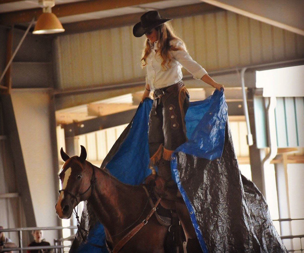 You don&#39;t know you have courage until it&#39;s your only option #ItMattersHowYouGetThere  #Horses #courage<br>http://pic.twitter.com/GSr7zc3HZc