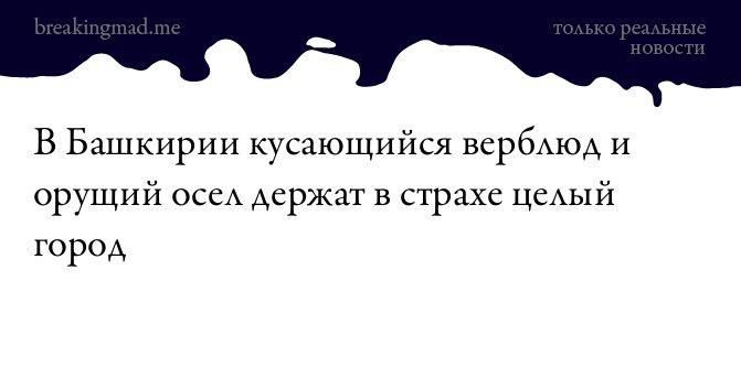 Посольство РФ в США обеспокоено методичкой Пентагона по возможным боестолкновениям с Россией - Цензор.НЕТ 1017