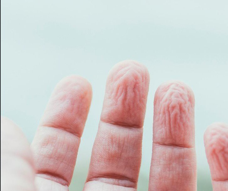 #DYK Our fingers wrinkle in water due to an evolutionary response that enhances our grip underwater  http:// bbc.in/1UopCzM  &nbsp;  <br>http://pic.twitter.com/ALtJBm5bnz